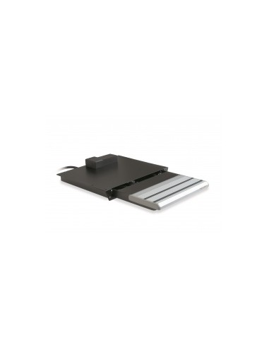P2000/10856-550R uitschuifbare trap