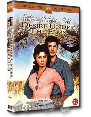 Desire Under the Elms - Sophia Loren, Anthony Perkins - DVD (1957)